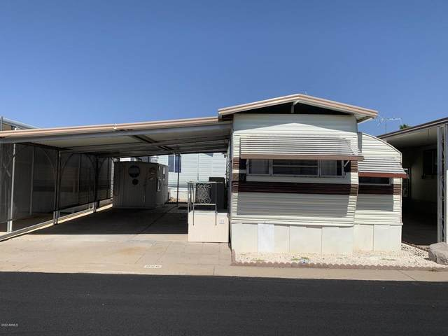 226 E Barrel Cactus Lane, Florence, AZ 85132 (MLS #6138154) :: The J Group Real Estate | eXp Realty