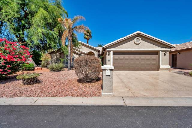 15794 W Piccadilly Road, Goodyear, AZ 85395 (MLS #6138187) :: Dave Fernandez Team | HomeSmart