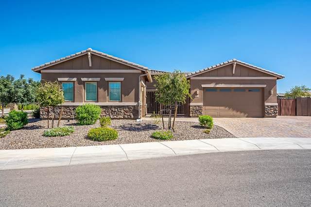 3231 S Huachuca Way, Chandler, AZ 85286 (MLS #6138210) :: Lucido Agency