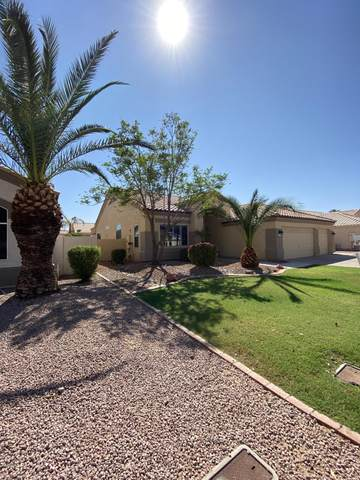 11119 W Citrus Grove Way, Avondale, AZ 85392 (MLS #6138229) :: The Property Partners at eXp Realty