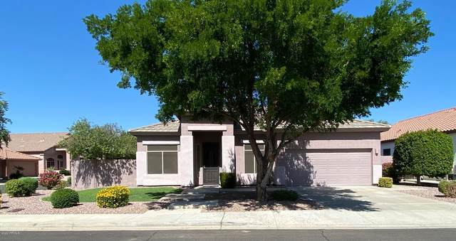 6964 W Remuda Drive, Peoria, AZ 85383 (MLS #6138250) :: The Property Partners at eXp Realty