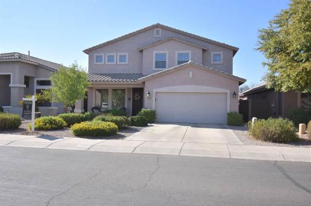 29842 N Little Leaf Drive, San Tan Valley, AZ 85143 (MLS #6138253) :: Keller Williams Realty Phoenix