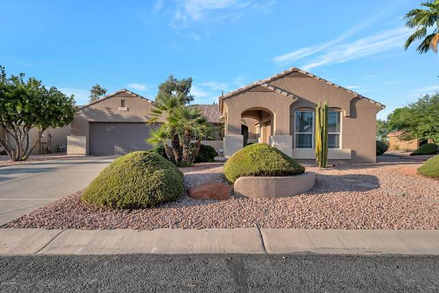 16182 W Edgemont Avenue, Goodyear, AZ 85395 (MLS #6138261) :: Keller Williams Realty Phoenix