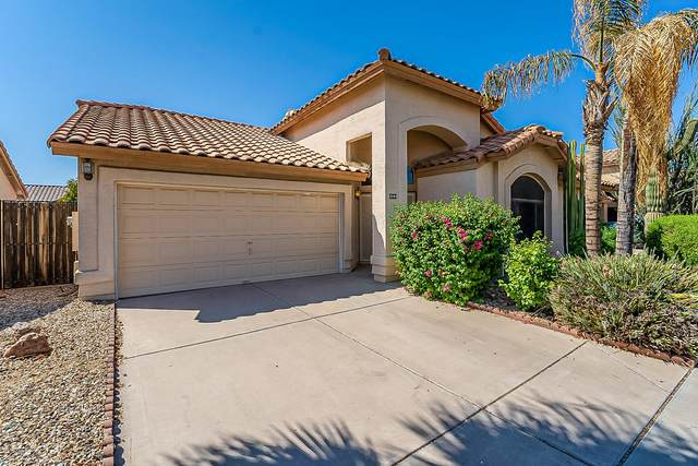 3544 N 108TH Avenue, Avondale, AZ 85392 (MLS #6138274) :: The Laughton Team