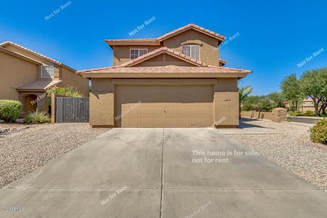 31636 N Cactus Drive, San Tan Valley, AZ 85143 (MLS #6138295) :: The Property Partners at eXp Realty