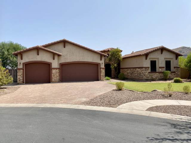 3221 E Branham Lane, Phoenix, AZ 85042 (MLS #6138385) :: The Laughton Team