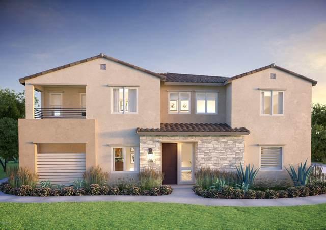 762 E Ginko Avenue #201, Gilbert, AZ 85297 (MLS #6138429) :: The Property Partners at eXp Realty