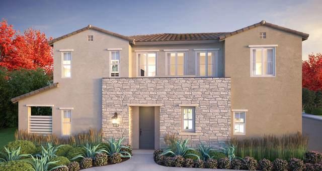 753 E Beauchamp Drive #101, Gilbert, AZ 85297 (MLS #6138438) :: The Property Partners at eXp Realty