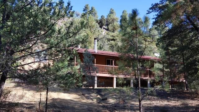 152 E Nail Ranch Road, Young, AZ 85554 (MLS #6138439) :: Brett Tanner Home Selling Team