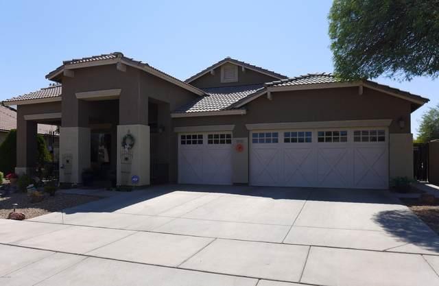 13755 W Watson Lane, Surprise, AZ 85379 (MLS #6138442) :: D & R Realty LLC