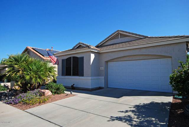 18063 W Udall Drive, Surprise, AZ 85374 (MLS #6138444) :: My Home Group