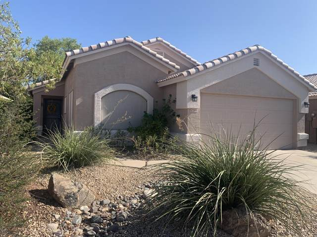 21841 N 34TH Avenue, Phoenix, AZ 85027 (MLS #6138447) :: The Property Partners at eXp Realty