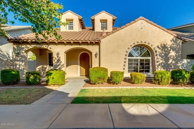 1146 S Agnes Lane, Gilbert, AZ 85296 (MLS #6138452) :: Long Realty West Valley