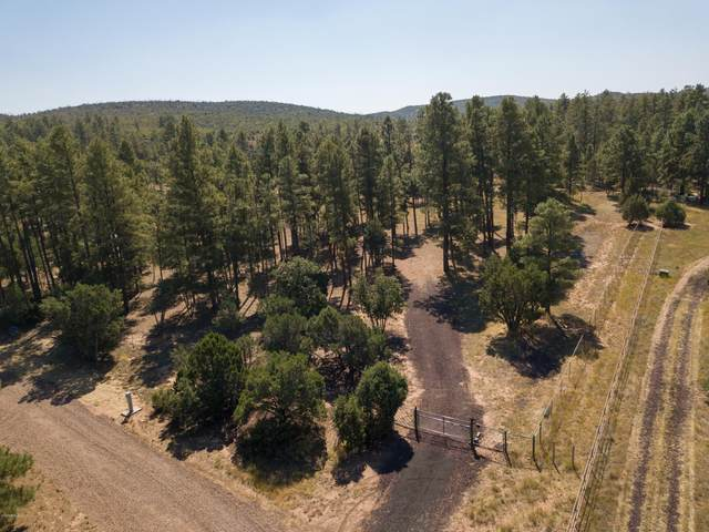 807 Pine Meadow Lane, Show Low, AZ 85901 (MLS #6138486) :: Brett Tanner Home Selling Team