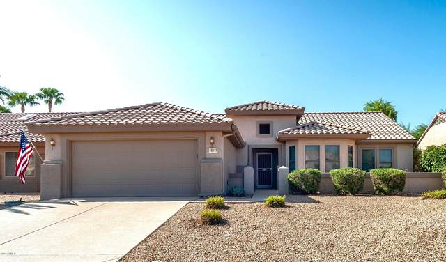 16147 W Starlight Drive, Surprise, AZ 85374 (MLS #6138489) :: Nate Martinez Team