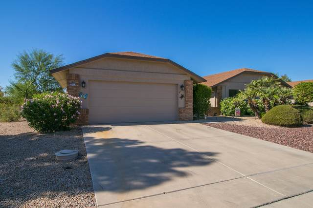 20418 N Spring Meadow Drive, Sun City West, AZ 85375 (MLS #6138512) :: The J Group Real Estate | eXp Realty