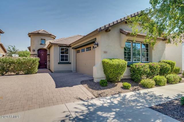 10660 E Pivitol Avenue, Mesa, AZ 85212 (MLS #6138535) :: Dijkstra & Co.