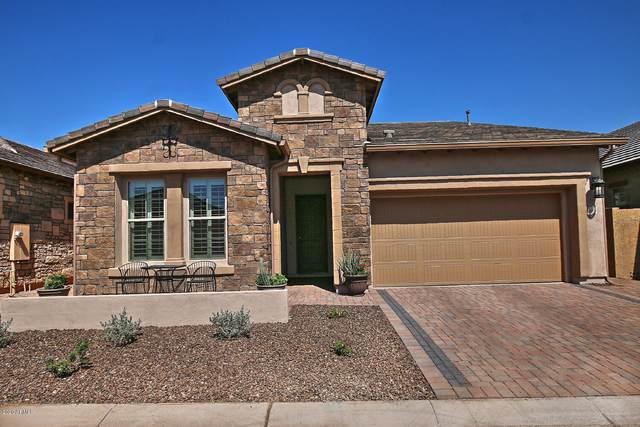 6936 E Quill Street, Mesa, AZ 85207 (MLS #6138550) :: Klaus Team Real Estate Solutions