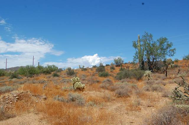 42100 N 3RD Street, Phoenix, AZ 85086 (MLS #6138586) :: Arizona Home Group