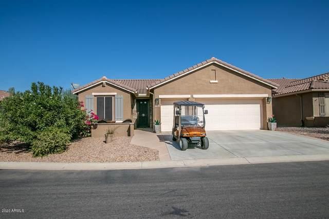 5388 N Mica Lane, Eloy, AZ 85131 (MLS #6138593) :: Howe Realty