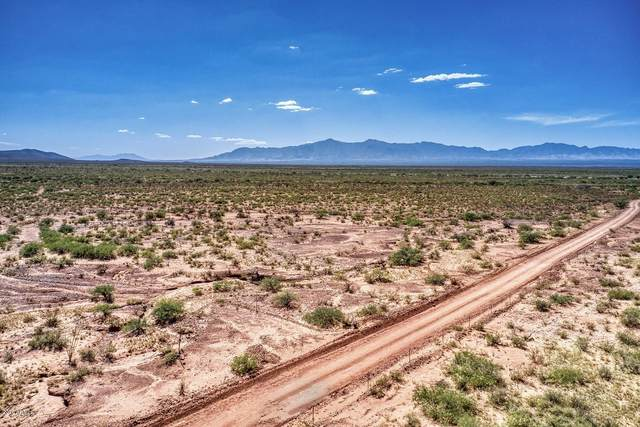 TBD E Windmill Road, Tombstone, AZ 85638 (MLS #6138738) :: Keller Williams Realty Phoenix
