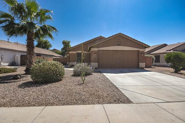 45135 W Paraiso Lane, Maricopa, AZ 85139 (MLS #6138759) :: Yost Realty Group at RE/MAX Casa Grande