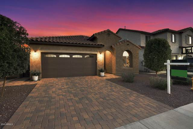 13117 W Briles Road, Peoria, AZ 85383 (MLS #6138772) :: Brett Tanner Home Selling Team