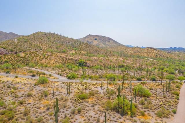 42421 N 72ND Street, Cave Creek, AZ 85331 (MLS #6138807) :: Dave Fernandez Team | HomeSmart