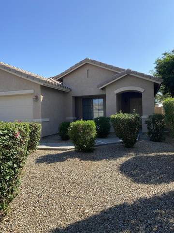 16625 N 153RD Drive, Surprise, AZ 85374 (MLS #6138814) :: D & R Realty LLC