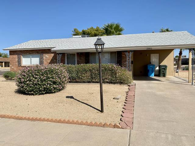 2302 E Betty Elyse Lane E, Phoenix, AZ 85022 (MLS #6138900) :: Dave Fernandez Team | HomeSmart