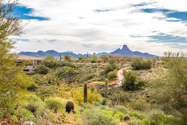 9642 N Hidden Canyon Court, Fountain Hills, AZ 85268 (MLS #6138943) :: The Everest Team at eXp Realty