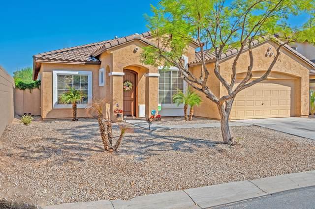 17496 W Elaine Drive, Goodyear, AZ 85338 (MLS #6139055) :: Keller Williams Realty Phoenix