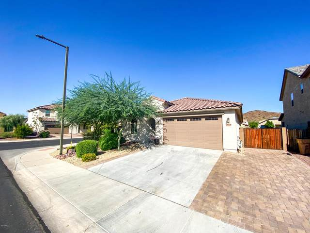13238 W Tether Trail, Peoria, AZ 85383 (MLS #6139137) :: The Helping Hands Team