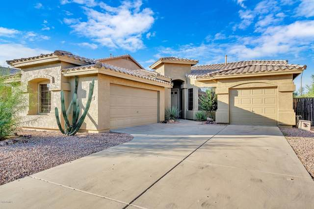 29220 N 48th Street, Cave Creek, AZ 85331 (MLS #6139161) :: Keller Williams Realty Phoenix