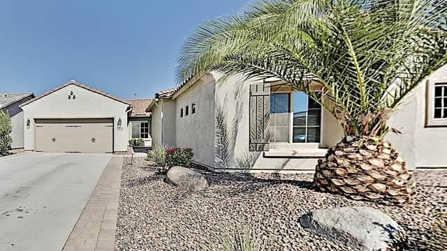 6614 W Desert Blossom Way, Florence, AZ 85132 (MLS #6139196) :: Keller Williams Realty Phoenix