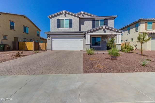18184 W Raymond Street, Goodyear, AZ 85338 (MLS #6139226) :: Keller Williams Realty Phoenix