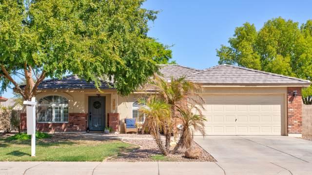 2882 E Morgan Drive, Gilbert, AZ 85295 (MLS #6139237) :: Dijkstra & Co.