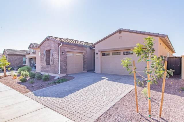 19883 W Glenrosa Avenue, Litchfield Park, AZ 85340 (MLS #6139246) :: Keller Williams Realty Phoenix