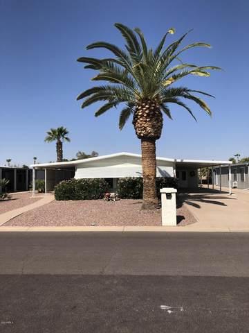 9352 E Olive Lane S, Sun Lakes, AZ 85248 (#6139277) :: The Josh Berkley Team
