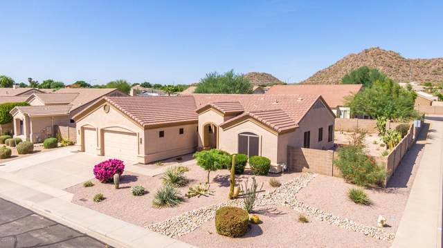9564 E Grandview Street, Mesa, AZ 85207 (MLS #6139328) :: Yost Realty Group at RE/MAX Casa Grande