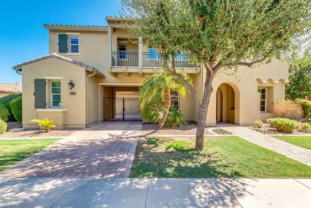 4581 S Pecan Drive, Chandler, AZ 85248 (MLS #6139331) :: Dave Fernandez Team | HomeSmart