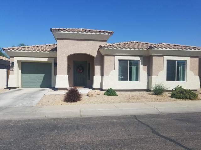 508 W Latona Road, Phoenix, AZ 85041 (MLS #6139351) :: Yost Realty Group at RE/MAX Casa Grande