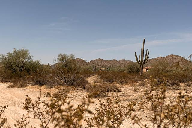 0 W Silverdale, Queen Creek, AZ 85142 (MLS #6139361) :: The Garcia Group