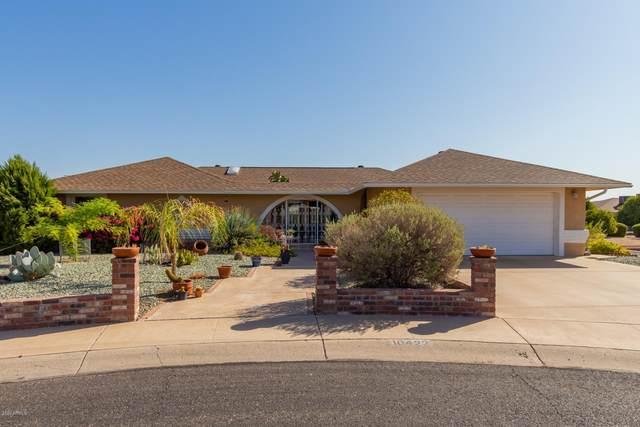 10422 W Indian Wells Drive, Sun City, AZ 85373 (MLS #6139374) :: Dave Fernandez Team | HomeSmart