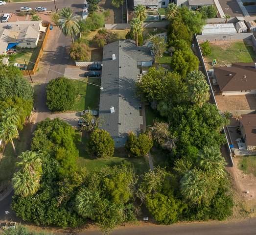 5328 E Virginia Avenue, Phoenix, AZ 85008 (MLS #6139381) :: Yost Realty Group at RE/MAX Casa Grande