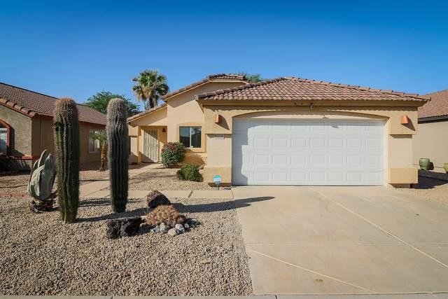 2014 E Aire Libre Avenue, Phoenix, AZ 85022 (MLS #6139397) :: Yost Realty Group at RE/MAX Casa Grande