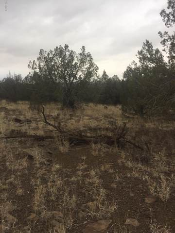 ... W Camp Road, Ash Fork, AZ 86320 (MLS #6139401) :: Brett Tanner Home Selling Team