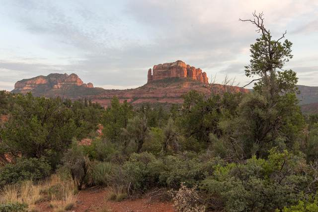 95 Hilltop Road, Sedona, AZ 86336 (MLS #6139459) :: NextView Home Professionals, Brokered by eXp Realty