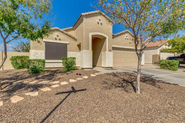 12064 W Morning Dove Drive, Sun City, AZ 85373 (MLS #6139512) :: Brett Tanner Home Selling Team