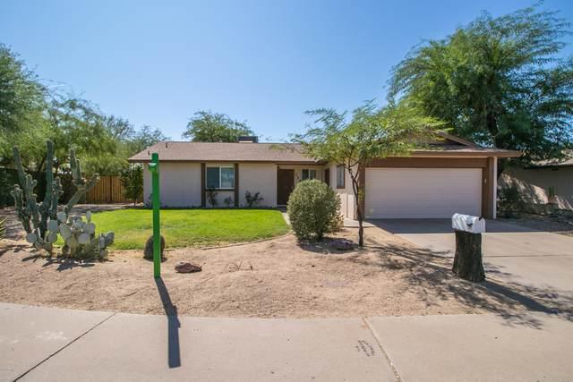 719 W Michelle Drive, Phoenix, AZ 85023 (MLS #6139533) :: Brett Tanner Home Selling Team